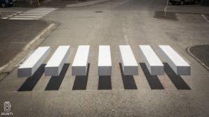 perspective zebra